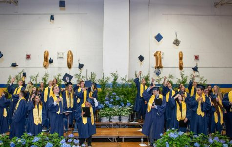 Class of 2019: By the Numbers